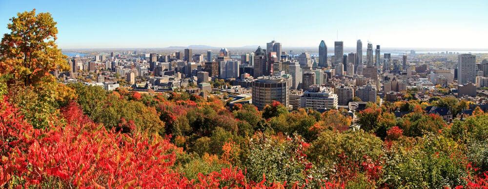 Stockez vos bagages avec LuggageHero et explorez Montréal en toute liberté