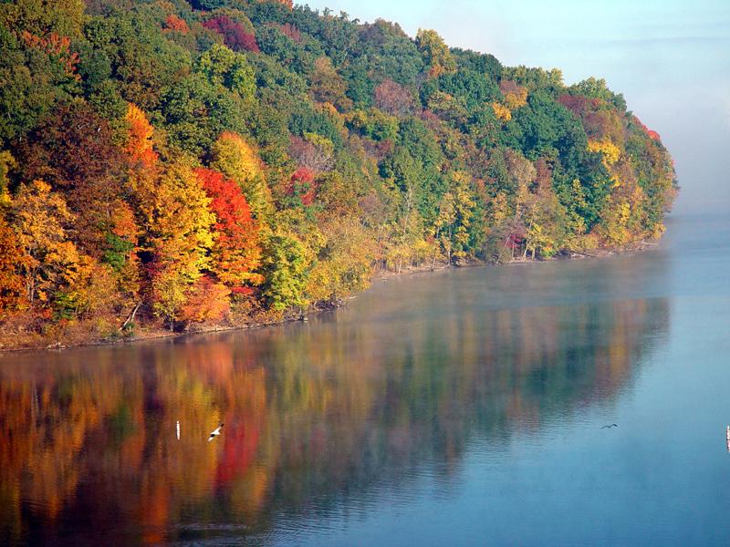 fall foliage spots