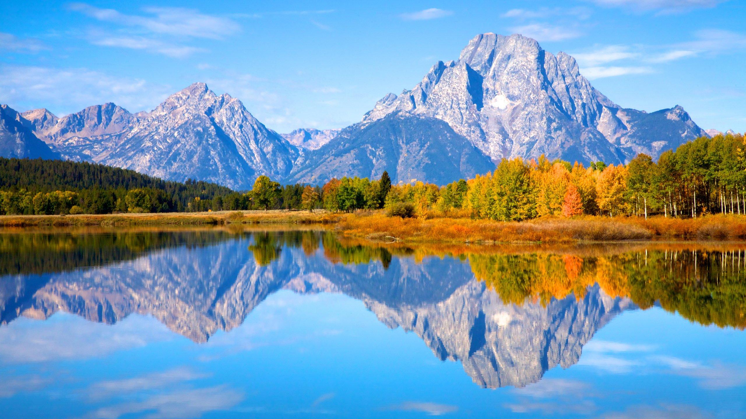 autumn colors Grand Teton